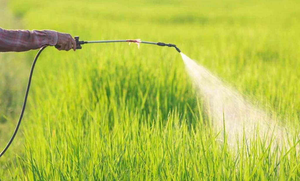 APEO : son alternative naturelle au glyphosate séduit