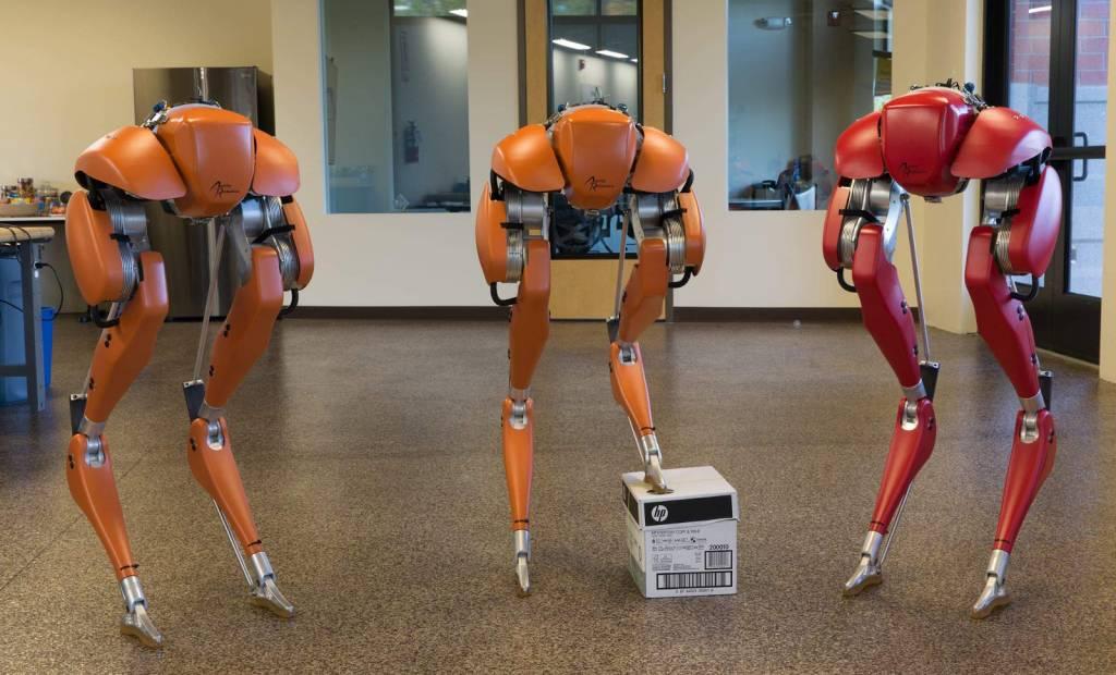 Agility Robotics lance un robot chargé de livrer des colis