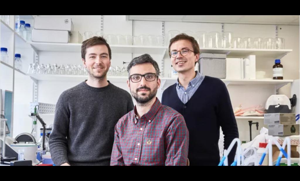La commercialisation d'une imprimante 3D pour ADN