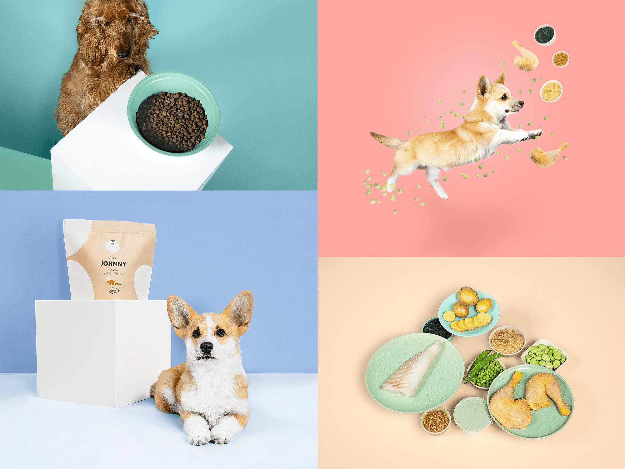 Japhy, alimentation canine