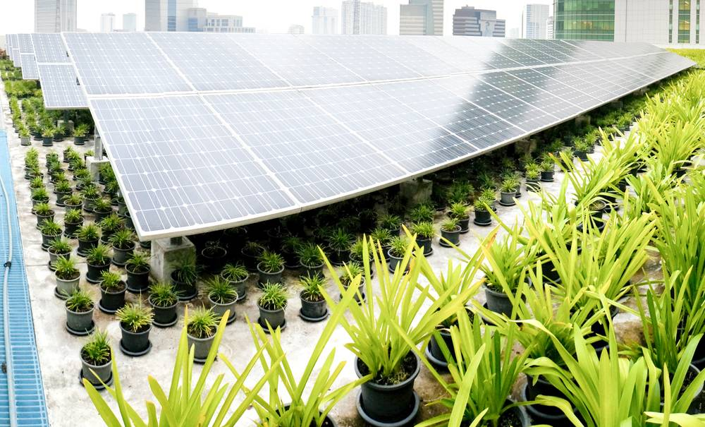 Digital InPulse : lancement du concours GreenTech de Huawei