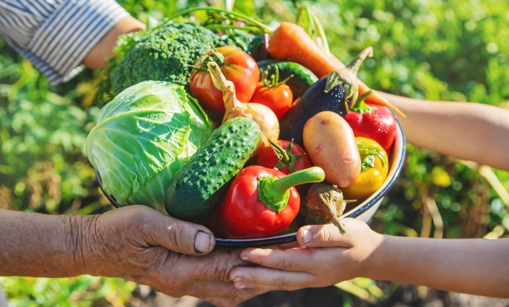Des légumes à la place des journaux dans les kiosques de presse